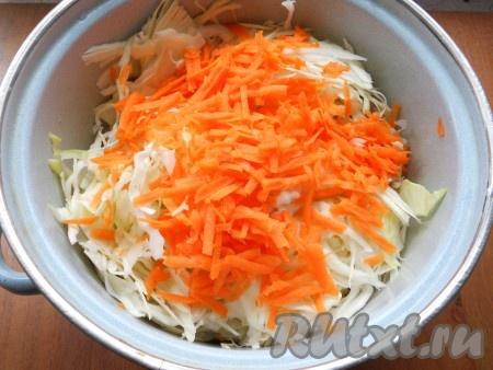 Капусту тоненько нашинковать, чуть посолить и помять руками. Добавить натертую на крупной терке морковь.
