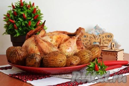 Курица, запеченная целиком с картошкой в духовке
