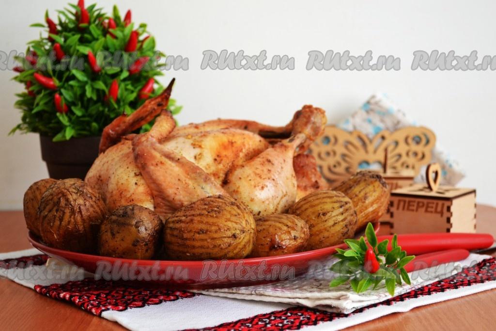 курица в духовке целиком рецепты с фото с картошкой