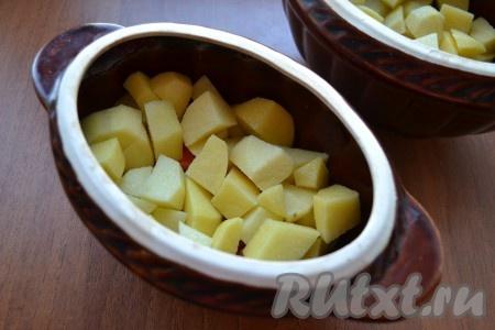 Сверху разложить нарезанный кубиками или кусочками картофель, который немного посолить.