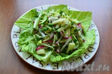 На плоскую тарелку выложить листья салата или молодой капусты, сверху горкой - перемешанный салат.