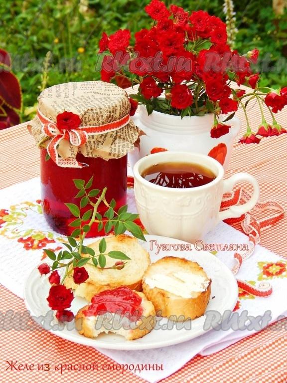 рецепты приготовления из красной смородины на зиму