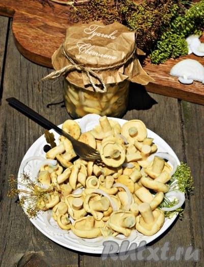 Грузди солёные горячим способом  рецепт  ЧудоПовар