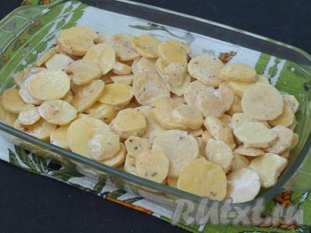 В жаропрочную форму (при желании, форму можно смазать маслом) выложить картошку и разровнять.