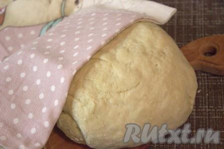 Готовое тесто скатать в шар, накрыть полотенцем (или плёнкой), поставить в тёплое, без сквозняков место на 1-1,5 часа. За это время тесто должно увеличиться в объёме в два раза.