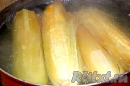 Залить холодной водой и поставить вариться на сильный огонь. Воду не солить! Довести кукурузу до кипения, уменьшить огонь, прикрыть не плотно крышкой и варить до готовности. Во время варки кукуруза обычно меняет свой цвет на ярко-желтый. Только очень молодые початки (недозрелая кукуруза) могут остаться кремового цвета, но при этом быть уже съедобными (в таких початках зерна не крупные и сами початки тоже небольшого размера). Молодая кукуруза варится 20-30 минут. Чем старее кукуруза, тем дольше её надо варить (время варки может достигать 3 часов). Во время варки можно попробовать зерна на готовность. Вытащите початок, срежьте несколько зерен и попробуйте на вкус.