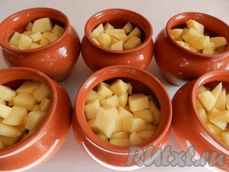 Картофель очистить и нарезать небольшими кубиками. Разложить картофель поверх мяса. В каждый горшочек добавить немного воды примерно на 1/3) и поставить в холодную духовку на 1 час при температуре 190 градусов.