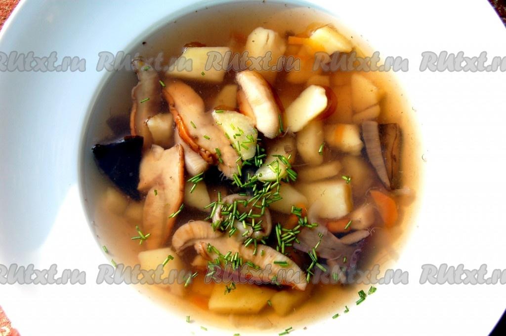 рецепт как сварить суп из свежих грибов