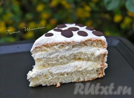 Бисквитный торт в разрезе.