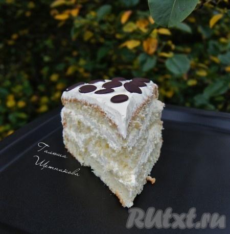 Воздушный, нежный бисквитный торт в разрезе