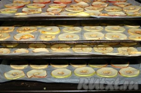 Через сутки застелить противни бумагой для выпечки и выложить на них кружочки яблок из сахарного сиропа. Отправить в духовку при температуре 60 градусов. В процессе сушки температуру можно повысить до 100 градусов. Время от времени можно переворачивать ломтики яблок.
