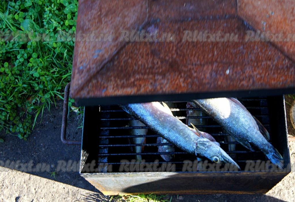 Коптильню с рыбой на мангал с