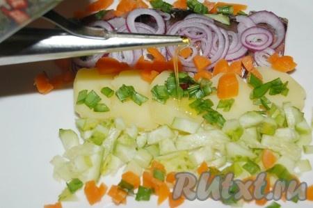Полить сельдь вместе с гарниром растительным маслом.