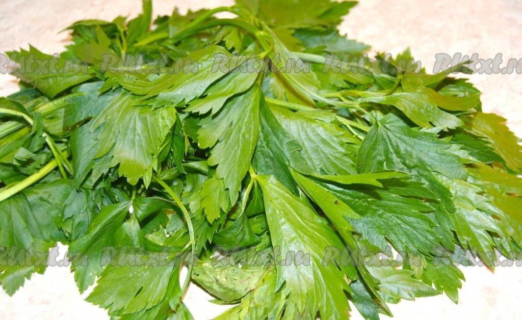 Рецепт настойки с грецкими перегородками