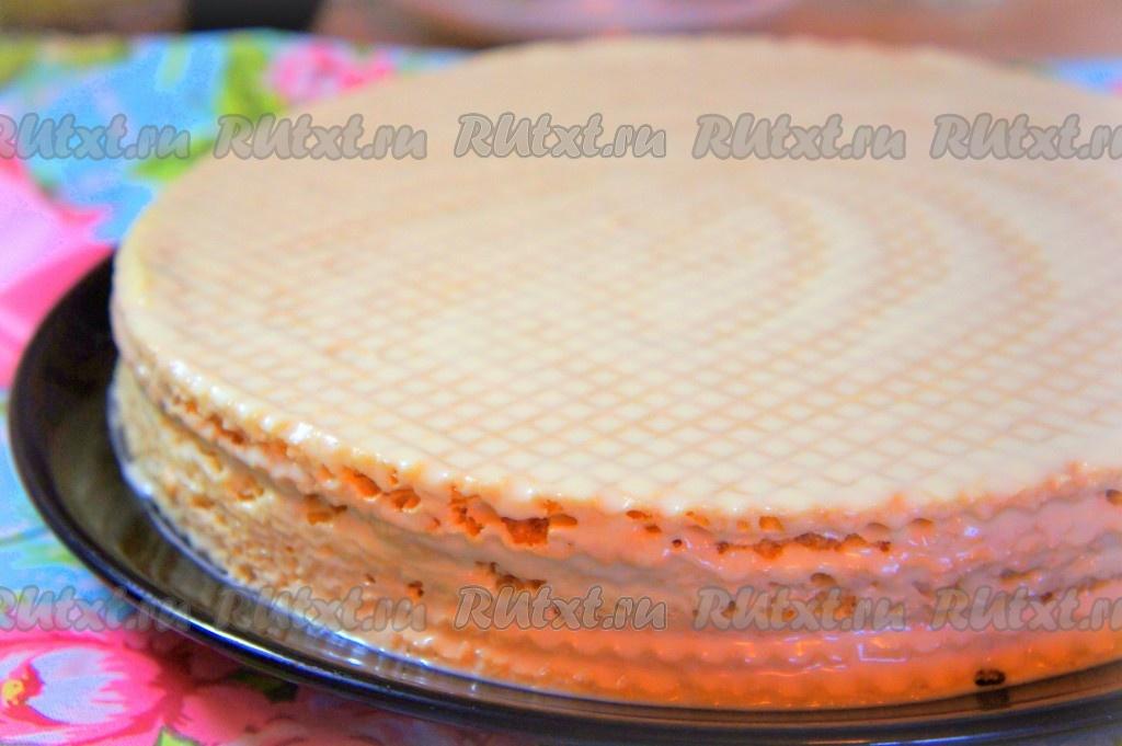 Как сделать корж на торт 221