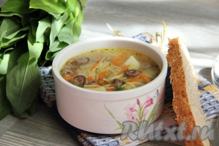 Когда картофель будет готов, добавляем в кастрюлю зажарку из моркови и чеснока, вермишель. Суп с куриными сердечками солим и перчим. Добавляем мелко рубленную зелень и варим 1-2 минуты на медленном огне. Даем вкусному, ароматному супу настояться и подаем к столу.