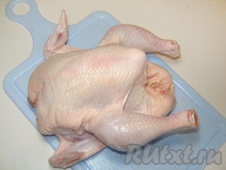 Цыпленок бройлера