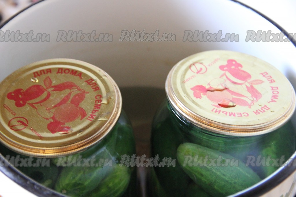 Огурцы на зиму рецепты хрустящие на 1 литр воды