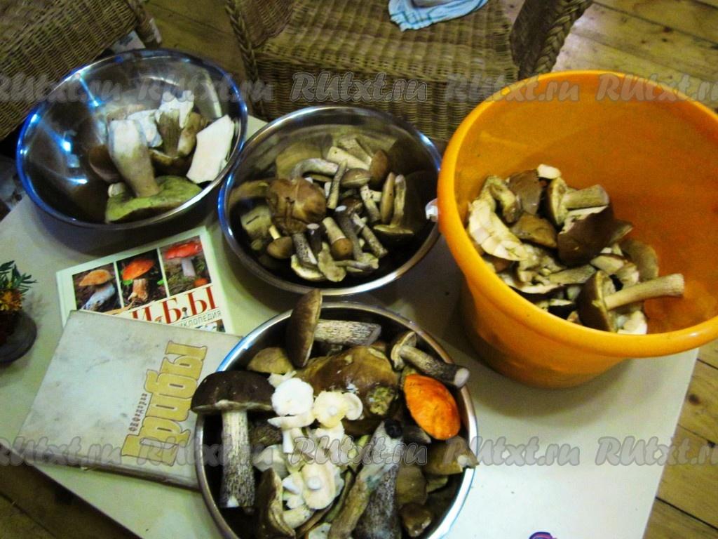 Как заморозить грибы на зиму