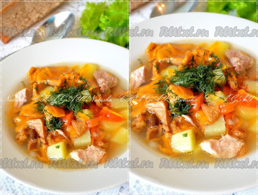 молочный суп с лисичками рецепт с фото