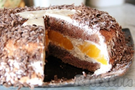 Абрикосовый торт с шоколадным кремом