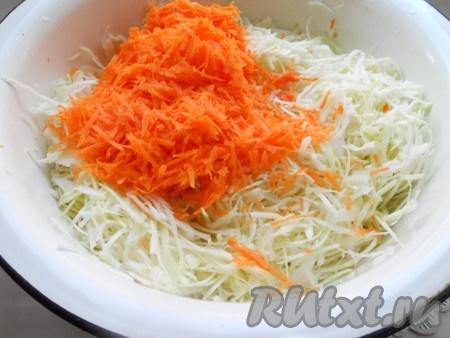 Капусту тонко нашинковать в большую миску или кастрюлю. Чуть посолить (добавить щепотку соли) и помять немного руками. Добавить натертую на крупной терке морковь.