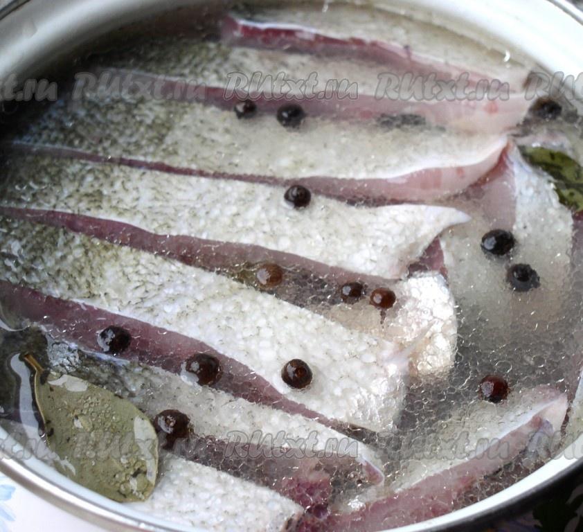 рыба толстолобик чем питается