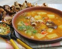рецепты грибного супа из замороженных грибов с плавленным сыром