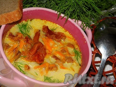 рецепт грибного супа из свежих грибов с плавленным сыром