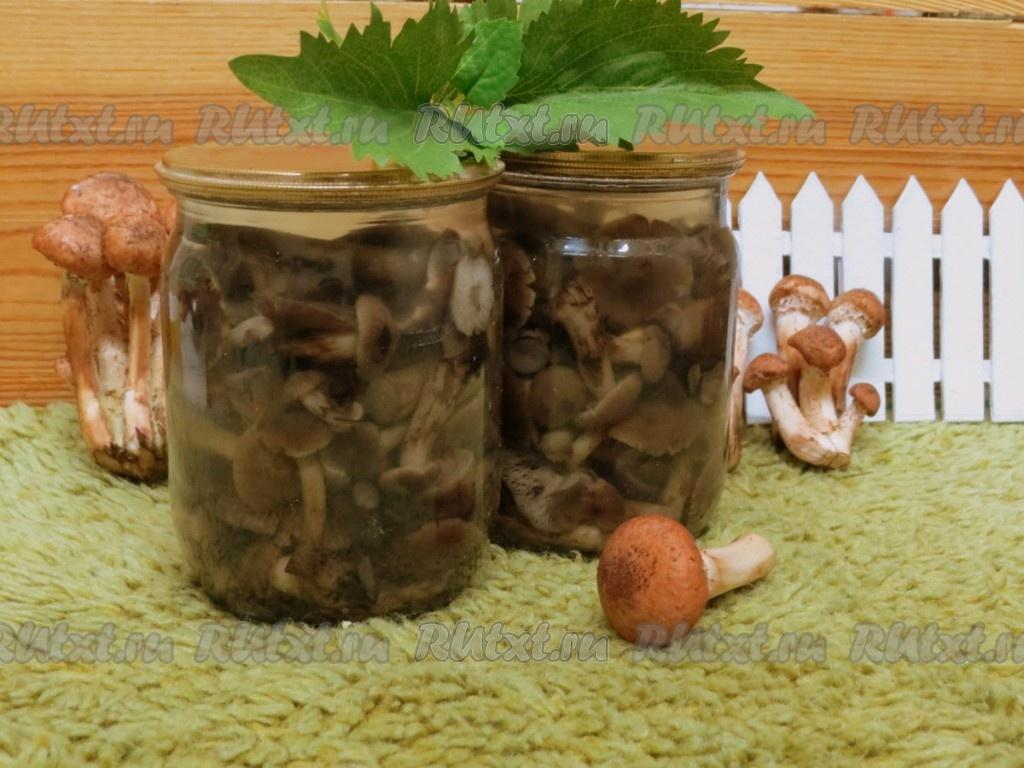 Огурцы с кабачками на зиму рецепты приготовления