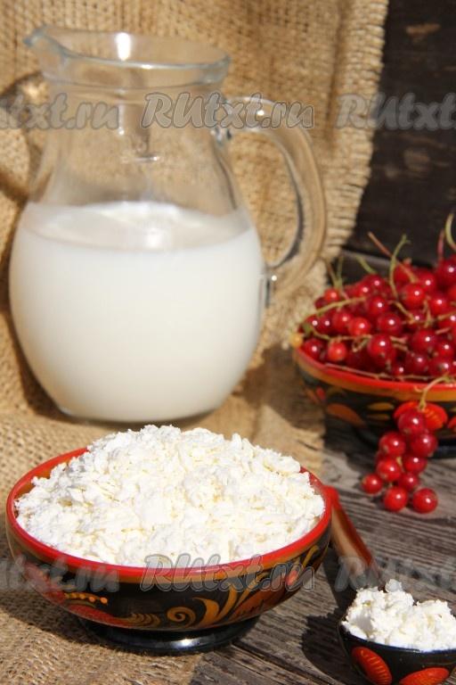 Как приготовить творог из молока рекомендации