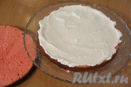 1/3 часть крема нанести на корж и разровнять.