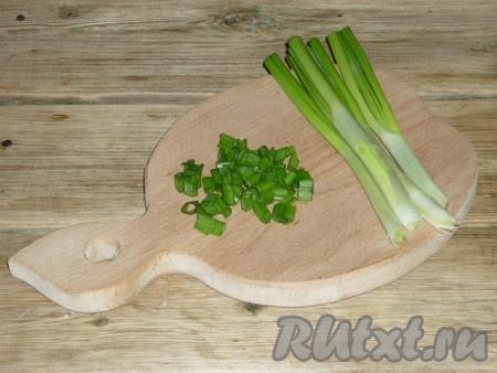 Зелёный лук вымыть, обсушить и мелко нарезать.