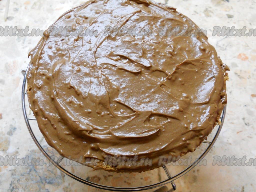 как очистить печень от паразитов в домашних